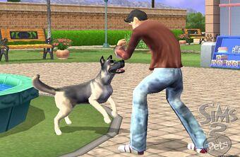 Los Sims 2 Mascotas Consola Fija Simspedia Fandom