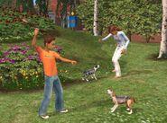 The Sims 2 Pets Screenshot 01