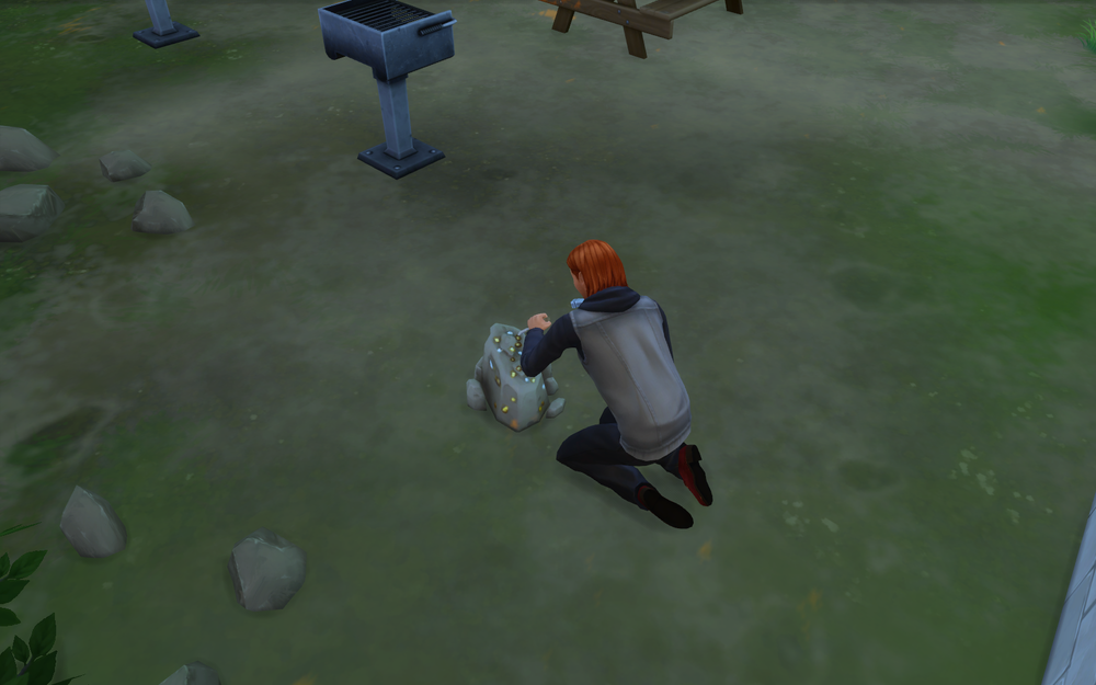 Коллекционирование (The Sims 4)
