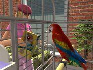 The Sims 2 Pets Screenshot 02