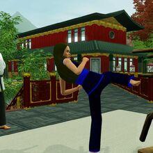 Sim kicking training dummy.jpg
