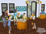 Celebration (3)