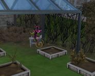 Леди Мимси ухаживает за садом