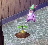 Végébébé Les Sims 3 en pousse