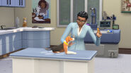 TS4 Cats and Dogs 11