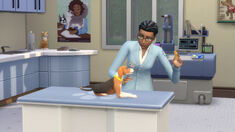 TS4 Cats and Dogs 11.jpg