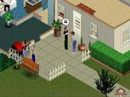 Are Sims