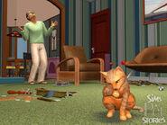Histoires d'animaux 07