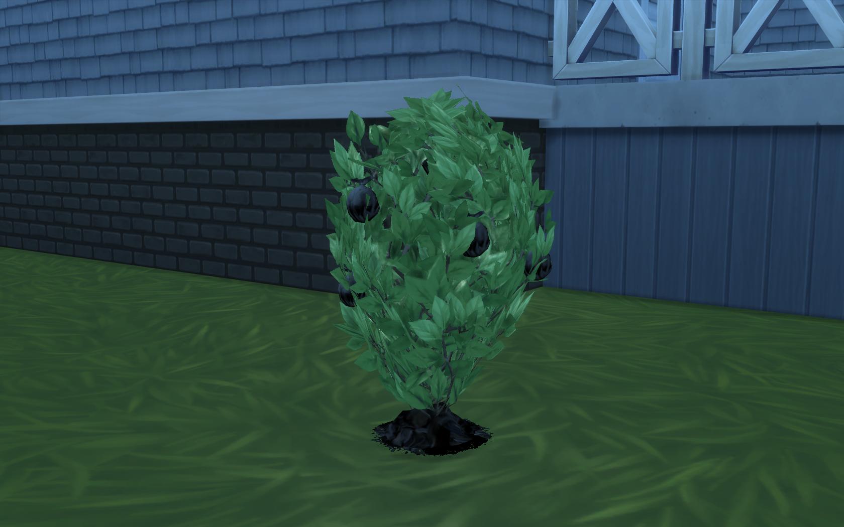 Trash plant