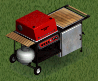 Barbecue/The Sims