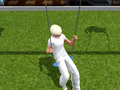 Goodwin on the swing