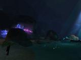 Forgotten Grotto