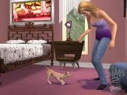 Wallpaper Pets 3