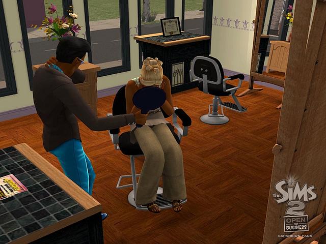 Les Sims 2 La Bonne Affaire 17.jpg
