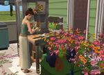 Les Sims 2 La Bonne Affaire 11