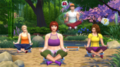 TS4Wellness.png