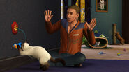 The Sims 3 Pets Screenshot 12