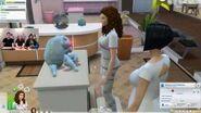 Les Sims 4 Chiens et Chats - Livestream officiel (octobre 2017)
