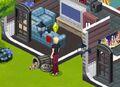 The Sims Social 19