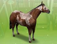 Alazan Sims Freeplay
