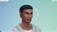 TS4 Patch 109 hair 4