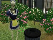 Bonehilda en el patio