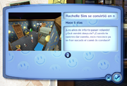 Sims Memory System