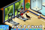 The Sims 2 Pets GBA Screenshot 06