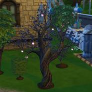 Plasma Fruit Tree in Daylight