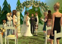 Wedding Arch (Celebration Stuff)