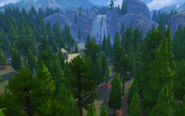 Granite Falls Forest Overview