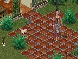 Kat-The Sims.jpg