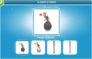 Flower & Power