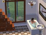 The Sims 2 Beta 19