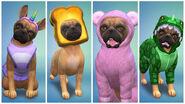 The Sims 4 - Gatos e Cães (17)
