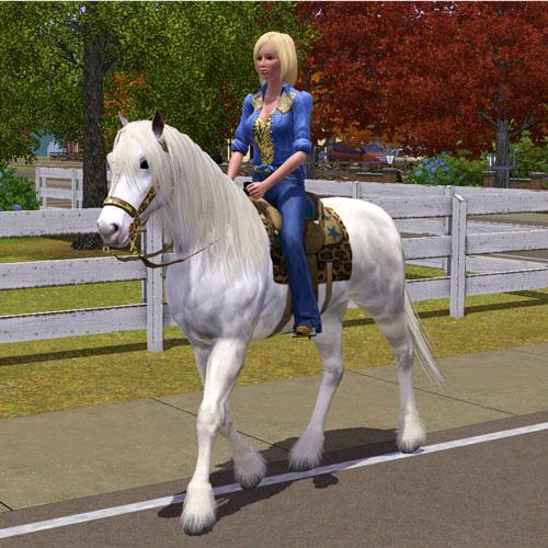 Cavalgar