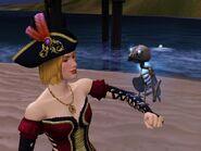 Piratas & Nobres 9