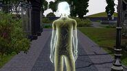 Fantasma - Eletrocussão