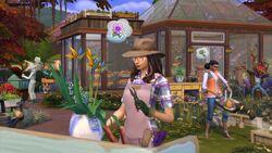 The Sims 4 - Estações (4).jpg