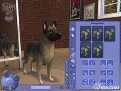 Criar um Cão (TS2).jpg