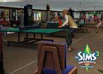 The Sims 3 Vida Universitária 31