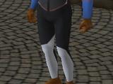 Aspiração (The Sims 2)
