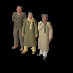 Família Taymur