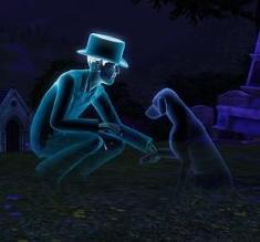 Fantasma de animal de estimação