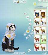 Gatos e Cães (Artwork 5)