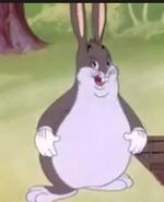 Big chunbgus