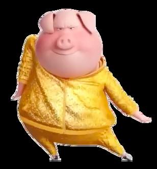 Gold sweatsuit