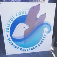 NYCC 2017 Bristol Cove Marine Research Center 6-10-17