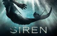 Freeform Siren Key Art