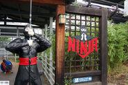 Ninja's Entrance